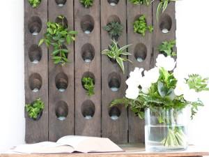 diy mur végétal