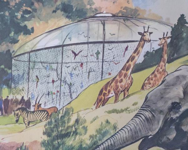 détail affiche zoo