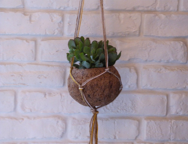 hanging plant ball diy