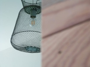 fish trap lamp