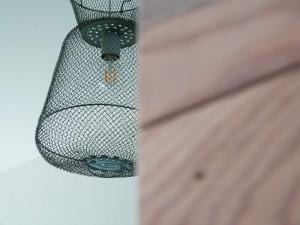 fish trap lamp